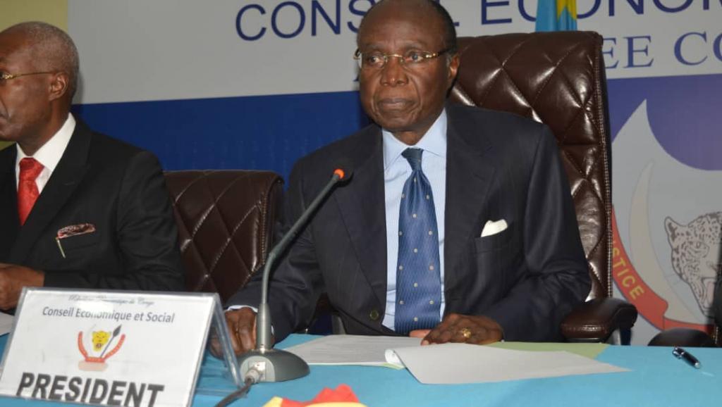RDC : De nouveaux membres au CES